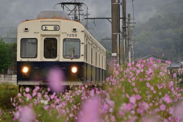 2014年10月5日 上田電鉄別所線 別所温泉~八木沢 7200系7255F