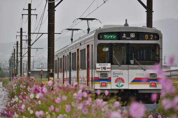2014年10月5日 上田電鉄別所線 別所温泉~八木沢 1000系1002F