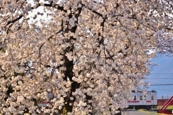 2013年4月11日 上田電鉄別所線 城下~上田 1000系1004F