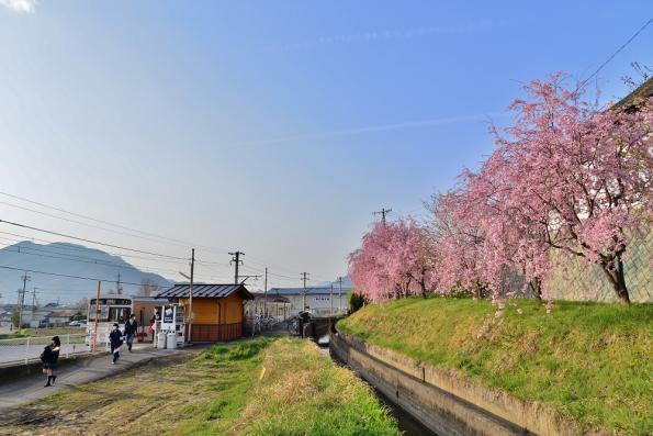 2013年4月17日 上田電鉄別所線 寺下 1000系1002F