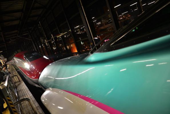 2013年5月20日 JR東日本東北新幹線 盛岡 E5系+E6系