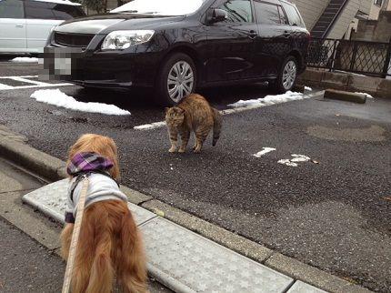 嵐丸 2012.3.1-2
