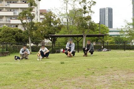 嵐丸 2012.5.4-147