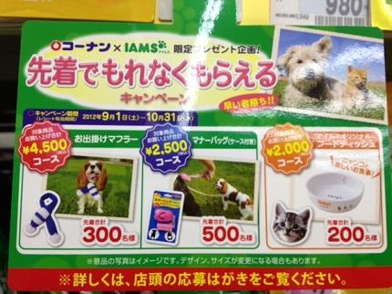 嵐丸 2012.9.14-12