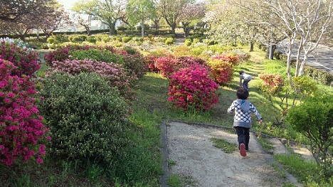 神峰公園2013年4月27日