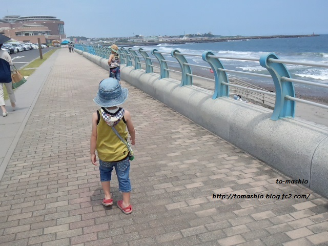 2013-8-5 水族館15