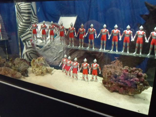 2013-8-5 水族館8
