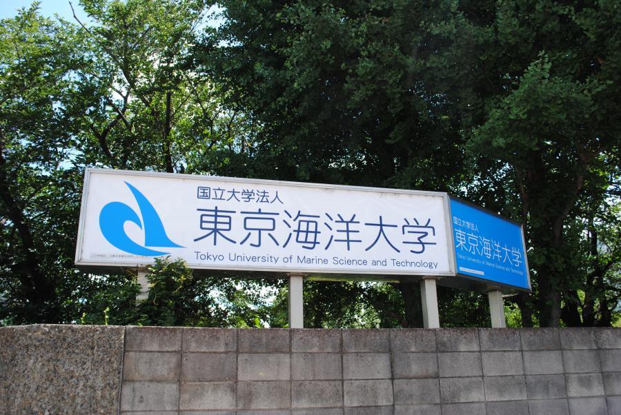 7/16 東京海洋大学