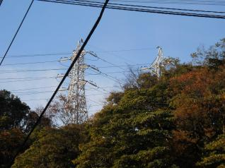 三崎線&横須賀線