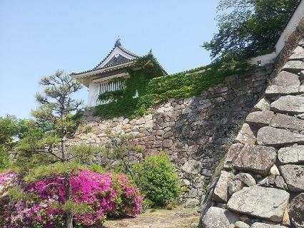 岡山城 (11)