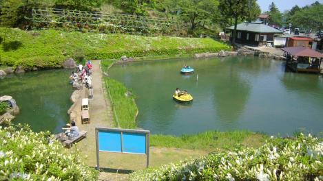 浜松市の奥山高原の池でボートに乗り鯉にエサをあげる人と横の小池で釣りを楽しむ親子たちをデジカメ写真で撮った
