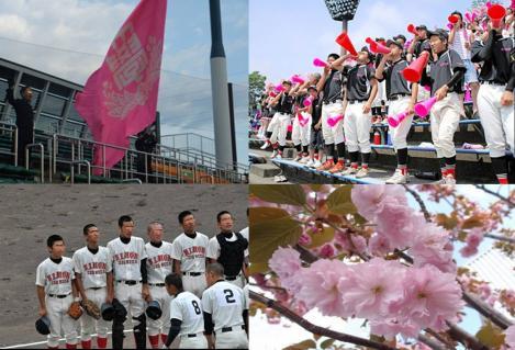 日本大学の応援の校旗の色は日本代表する桜色でピンクが使われている写真