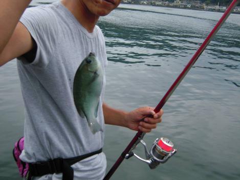 友人のてるみんこふはメジナを釣り上げた時のデジカメ写真撮影でちゅ