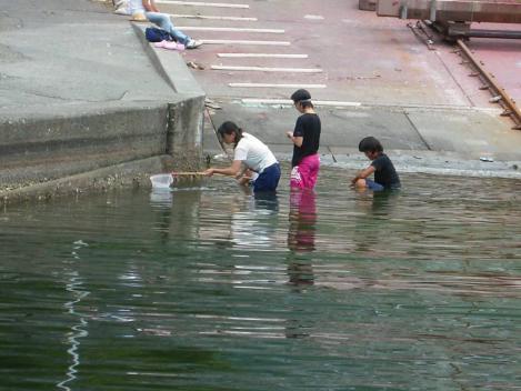 夏休みの女子中学生が仲間で沼津市多比の海水でキンギョナンブツダイすくいをしてる様子をデジカメ写真撮影しちゃった