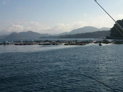 沼津市足保の磯釣りで潮の流れが変ったところを写真撮影