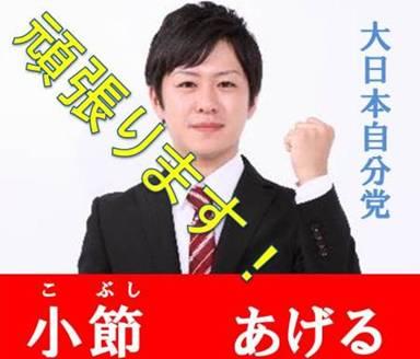 加工写真の選挙ポスターで国民にケンカをうってる様なポスター