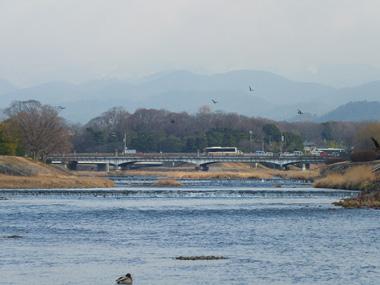 2賀茂大橋0220