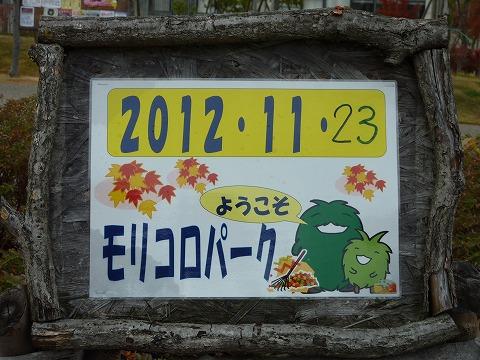 20121123_121312_Panasonic_DMC-TZ7.jpg
