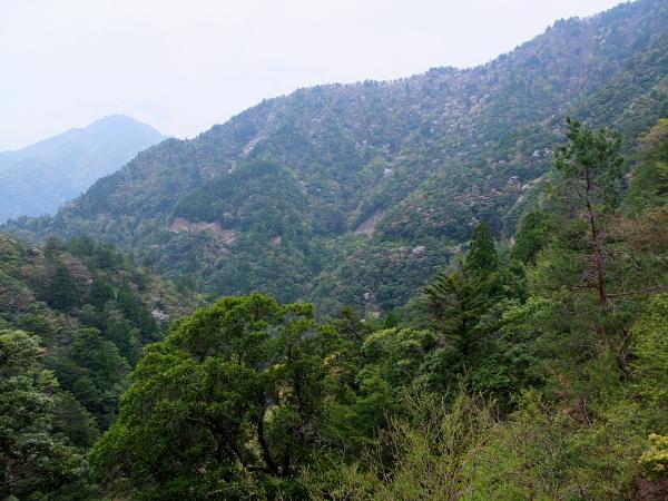 サンギリ林道下り遠景