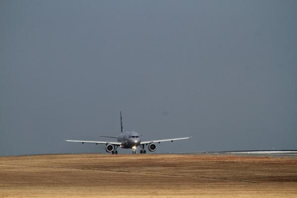 GK A320-232 JA11LL RJOM 140201 004