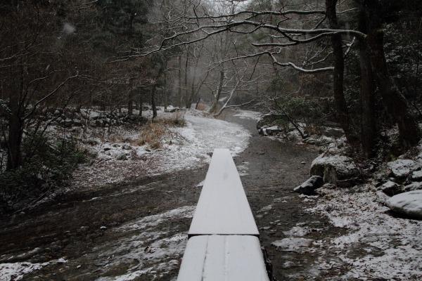 滑川渓谷・降雪 140206 03
