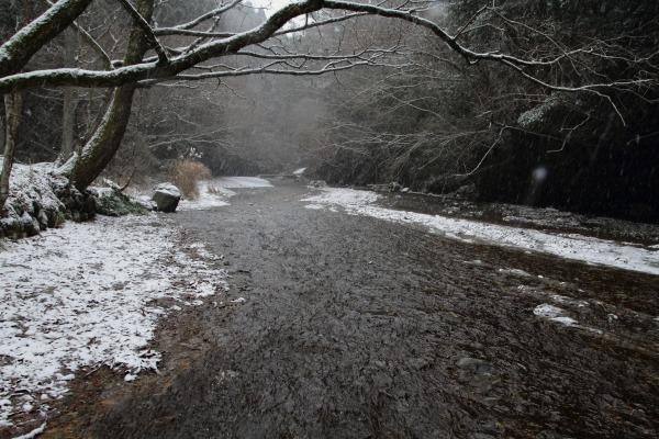 滑川渓谷・降雪 140206 04