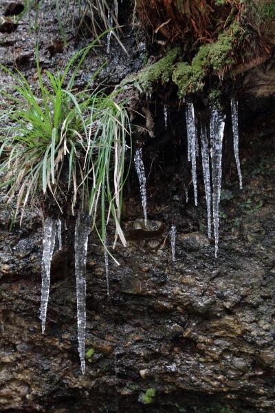 滑川渓谷・降雪 140206 01