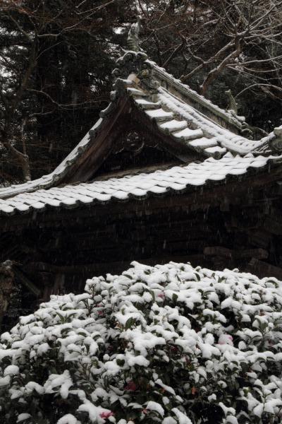 金毘羅寺・降雪 140206 03
