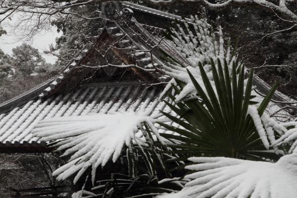 金毘羅寺・降雪 140206 04