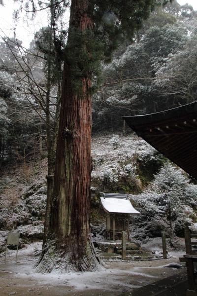 土谷三島神社・降雪 140206 04
