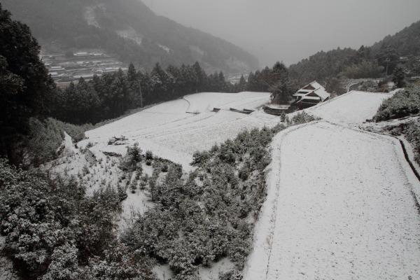 河之内大屋敷・降雪 140206 02