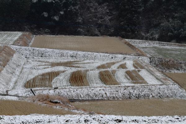 河之内下音田・降雪 140206 01
