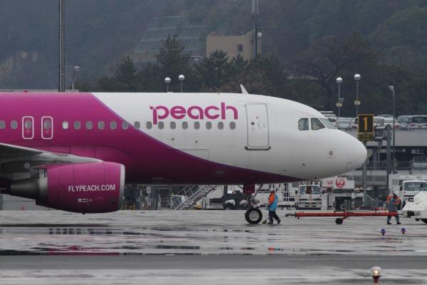 MM A320-214 JA802P RJOM 140208 01