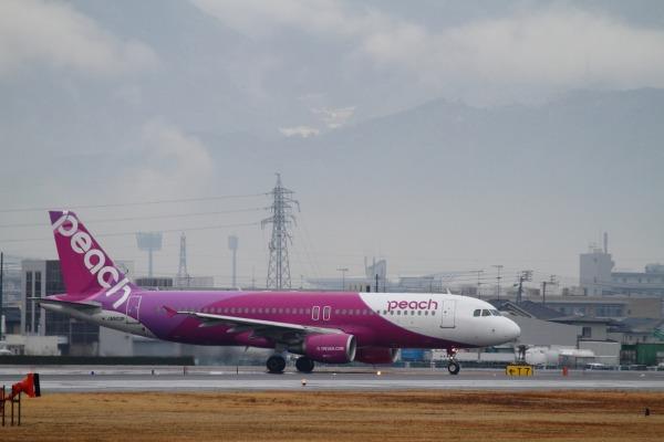 MM A320-214 JA802P RJOM 140208 03