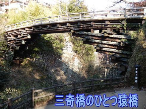 三奇橋 猿橋   2/25