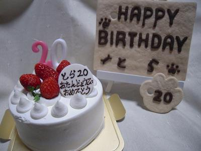 20歳のお誕生日2011.3.3