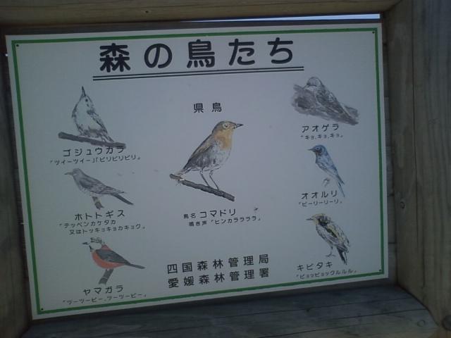 石鎚 12:30鳥看板