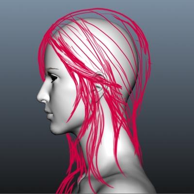 image_hair_011.jpg
