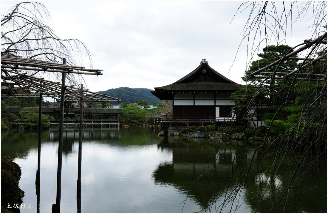 平安神宮6