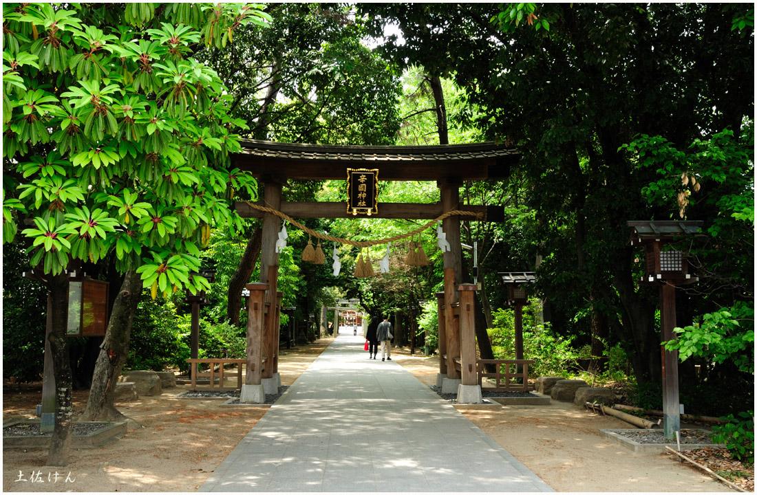 辛国神社1