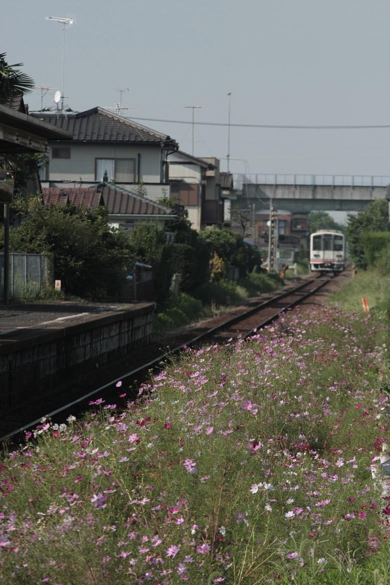 関鉄キハ350