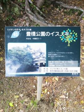 20130421_133059.jpg