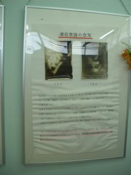 fukurai011.jpg