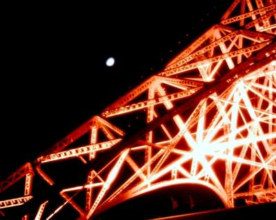 東京タワーと上弦の月・2014/11/29:Entry