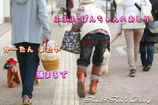 001IMG_8006.jpg