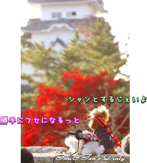 004IMG_7890.jpg