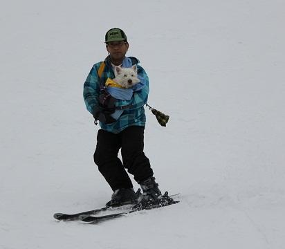 涼麻スキー