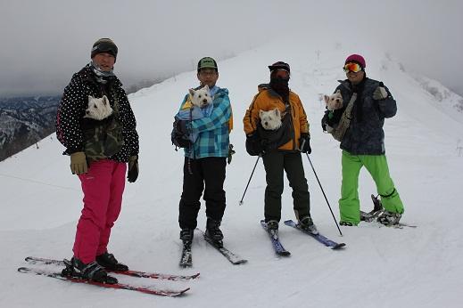 抱っこでスキー