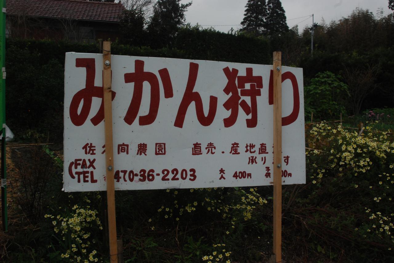 佐久間農園(看板)