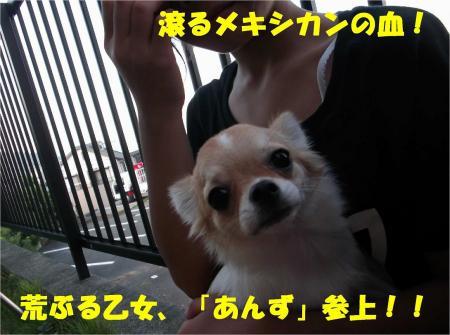 010_convert_20121009182628.jpg